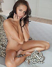 Diana G Wits Koenart - KOITO